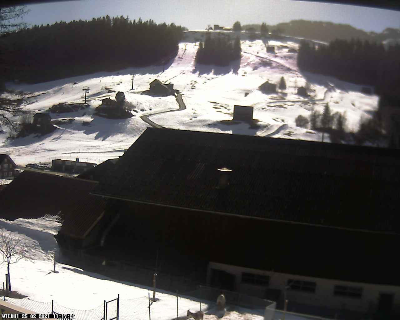 Webcam Wildhaus